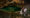 Leech & Estefan | Kantun Chi Cenote